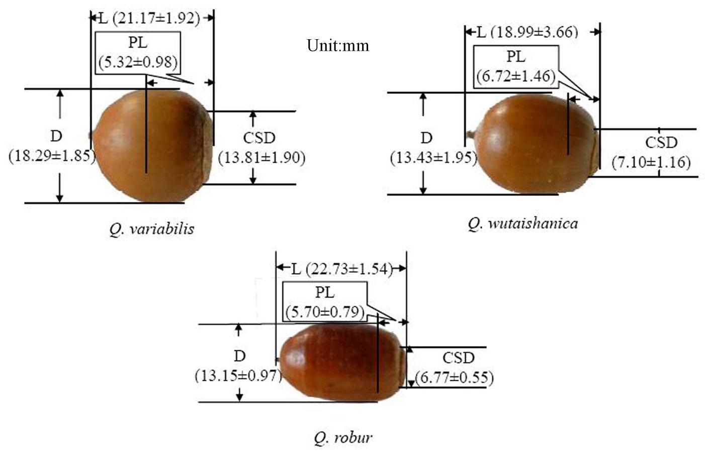 Liu Y, Hou L, Li Q (2015). Effects of different mechanical ...